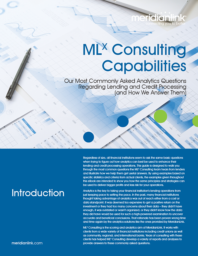 MLX Consulting Capabilities eBook